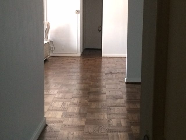 Wow. Many parquet. Much shine.